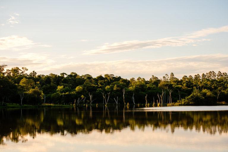 Ayuda a la Fundación Para La Tierra adquirir su propia reserva natural